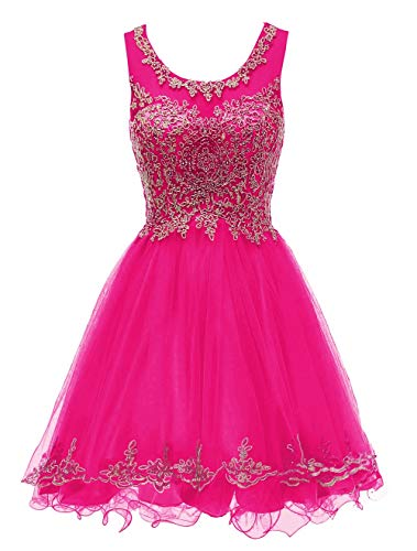 Short Tulle Prom Dresses for 8th Grade Tulle Lace Puffy Teens Dance Dress,20W