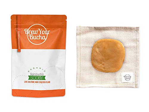 Brew Your Bucha Kombucha Tea SCOBY with starter fluid. SCOBY grown with our premium hand-selected black Yunnan Gold Tea
