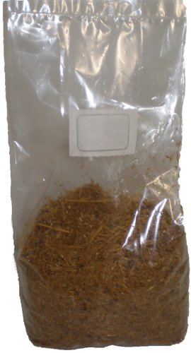 Grow Bag Magic Mushrooms - 4