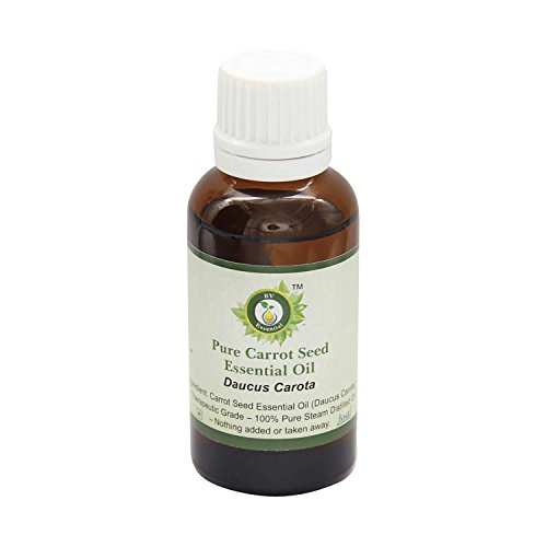 R V Essential Pura semilla de zanahoria esencial 30ml de aceite (1.01 oz)- Daucus carota (100% puro y natural de Grado...