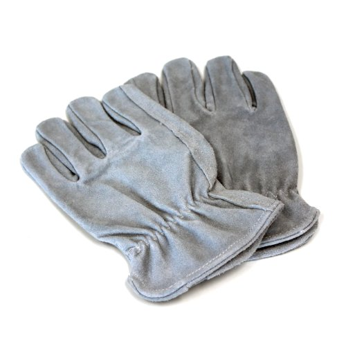 (Perfect Dog Training Gloves)