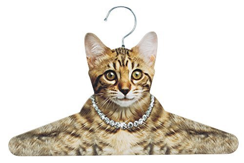 Cat Hanger Closet Organizer for Cat Lovers Photo-Realistic Kitten Clothes Hanger by The Paragon