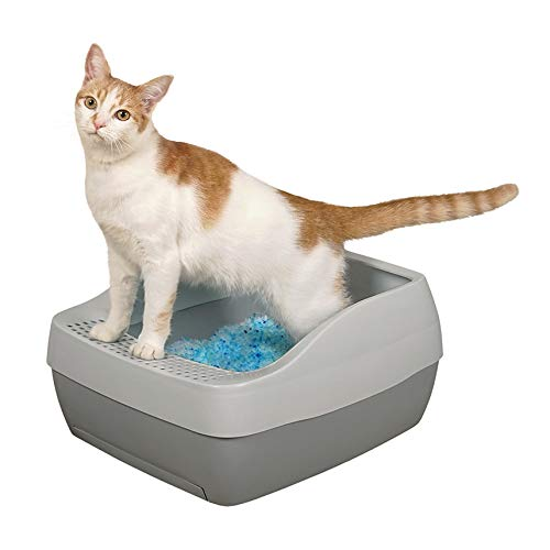 PetSafe Deluxe Crystal Cat Litter Box System, from The Makers of ScoopFree Self-Cleaning Cat Litter Box
