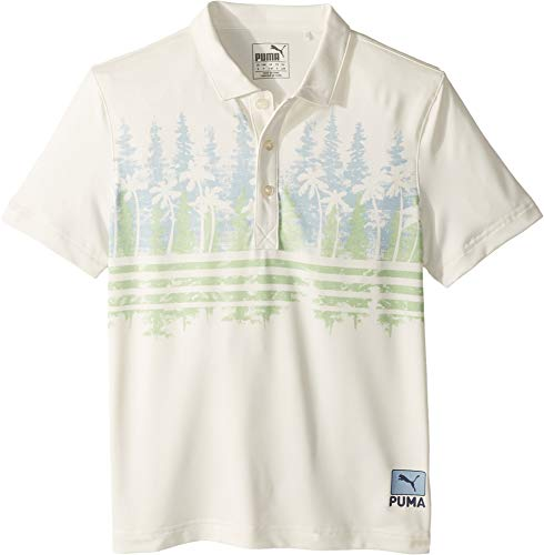 - PUMA Golf Kids Boy's Pines Polo (Big Kids) Ashley Blue Large