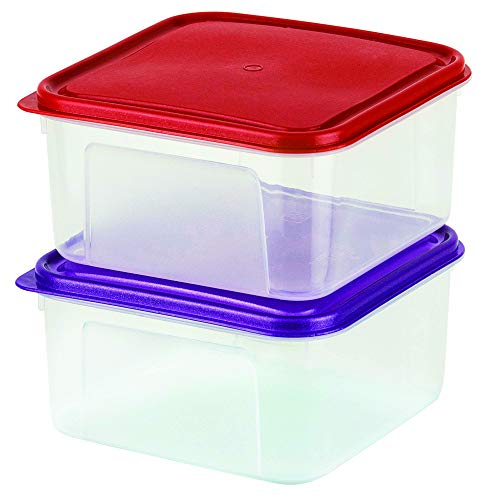 Use Box Multi Large - DecorRack Pack of 2 Large 2 Liter Square Food Storage Containers with Lids -BPA FREE- Plastic Bento Box Multiuse Hot and Cold Food Leftover Storage Freezer Safe Container Set of 2 Lunch Boxes, Random