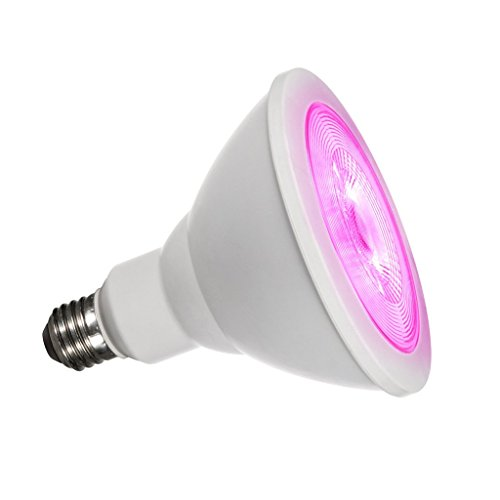 Highest Power Led Grow Light