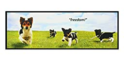 PetSafe Piddle Place Protective Guard-Freedom