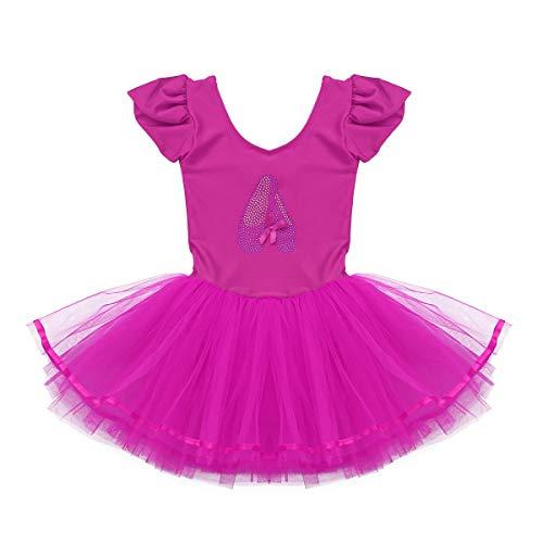 TiaoBug Girls Mesh Floral Ballet Dance Leotard Fairy Tutu Dress Dance Costume Rose Red 2-3 ()