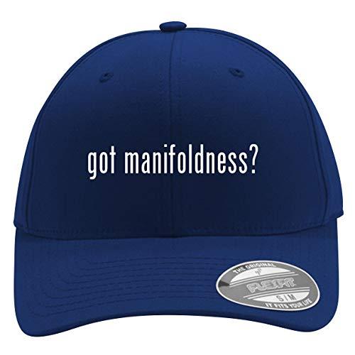 got Manifoldness? - Men's Flexfit Baseball Cap Hat, Blue, Small/Medium