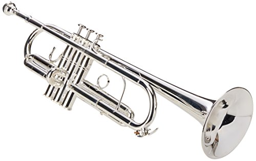 Roy Benson RBTR402C Bb/C Professional Trumpet