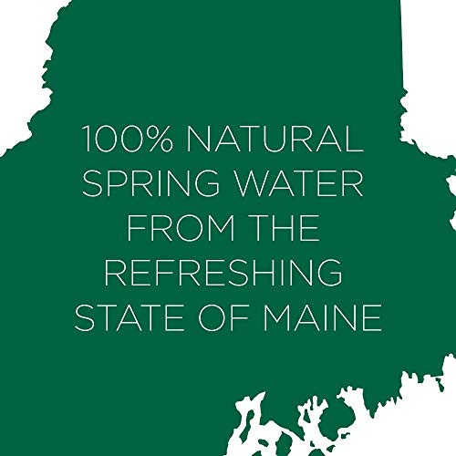 Poland Spring Origin, 100% Natural Spring Water, Recycled Plastic Bottle, 30.4 Fl Oz,  Pack of 8