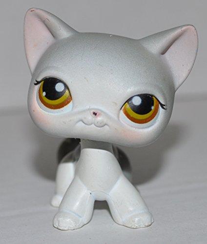 Shorthair Kitten #138  - Littlest Pet Shop  Collector Toy -