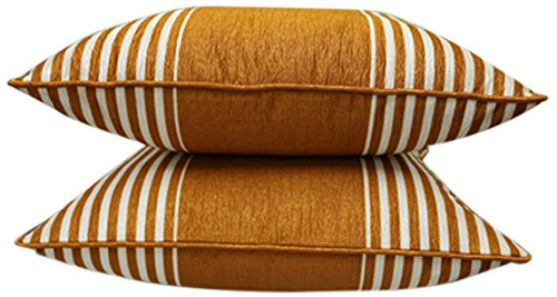 Welhome Snapshot 2 Piece Polyester Cushion Cover Set – 16″x16, Golden