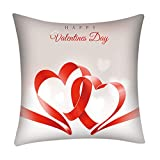 Pillow Covers Romantic Valentine's Day Wedding Gift Couch Sofa Cushion Cases Decorative 18''x18''(B)