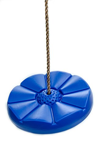 Review Blue Disk Seat Swing