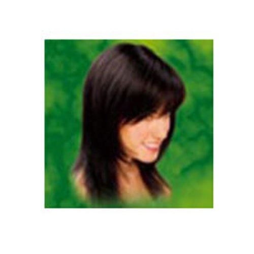 Naturtint 2N Permanent Black Brown Haircolor Kit, 5.45 Ounce - 3 per case. by Naturtint