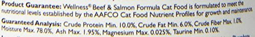 Wellness Complete Health Natural Canned Grain Free Wet Cat Food, Beef & Salmon Pate, 3-Ounce Can (Pack of 24)