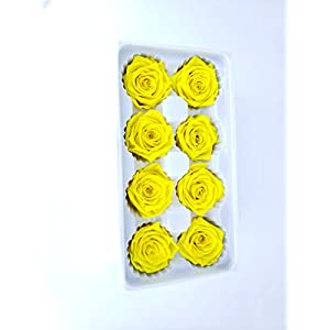OgisFlorist | 100% Real All Natural Premium Preserved Roses | No Water Needed | Perfect Alternative to Artificial & Dried Flowers for DIY Crafts, Decoration, Décor | 8 Medium Head | Bright Yellow 66