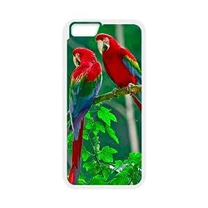 IPhone 6 Plus Cases Parrots Paradise, [White]
