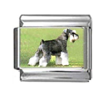 SCHNAUZER DOG Photo Italian Charm 9mm Link - 1 x DG344 Single Bracelet Link