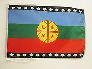 AZ FLAG Bandera del Pueblo MAPUCHE 45x30cm - BANDERINA ARAUCANOS 30 x 45 cm cordeles: Amazon.es: Hogar