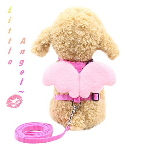 Pet Cat Dog Puppy Chest Strap| Angel Wings Vest with Leash| Harness and Collars Set for Small Doggie (M, Pink) ()