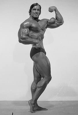 Arnold Schwarzenegger Inspiration Bodybuilding poster 36 inch x 24 inch