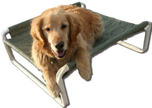 Rover Company Elevated Dog Bed, Autumn Fern by Rover