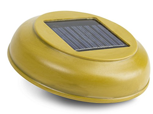 Bamboo Solar Light in US - 4