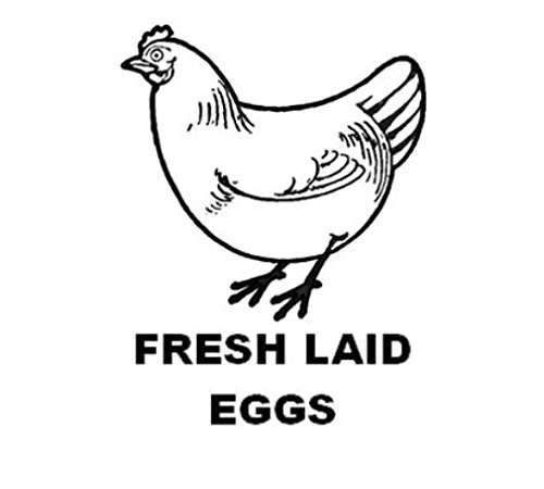 Personalized Rubber Egg Stamp - 12mm impression size (HEN) Photo #5