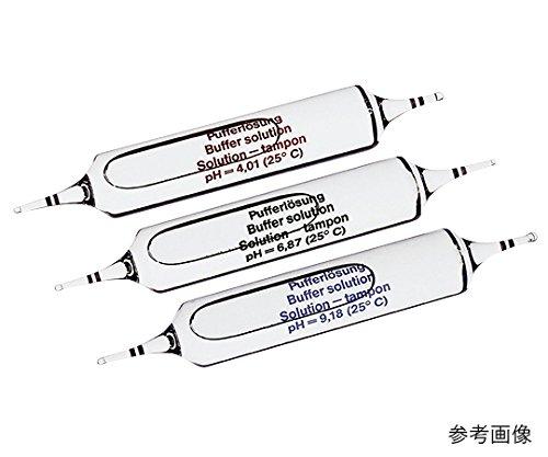 SIアナリティクス3-5244-05アンプル式pH標準液FIOLAX(R)pH4.01/6.87 B07BD15NB1 B07BD15NB1, 杷木町:36de6372 --- arvoreazul.com.br