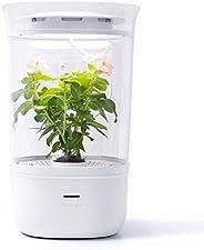 Bloomengine B100KHA Bluetooth Smart Indoor Planter, Pet Plant Grow, Flowering Plants, Interior Plant, Plant Gr