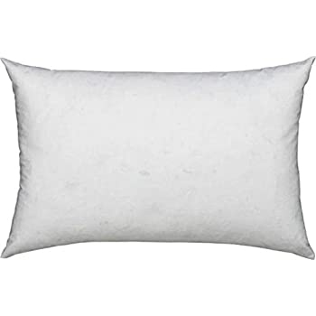 Amazon Com L Cozee Premium Feather And Down Pillow
