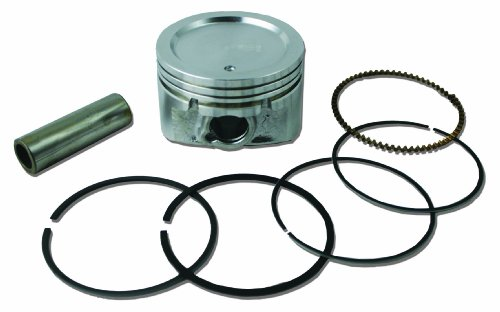 Briggs & Stratton 843951 Standard Piston Ring Set ()