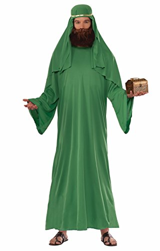 Forum Novelties Men's Forum Value Biblical Robe, Green, Standard -