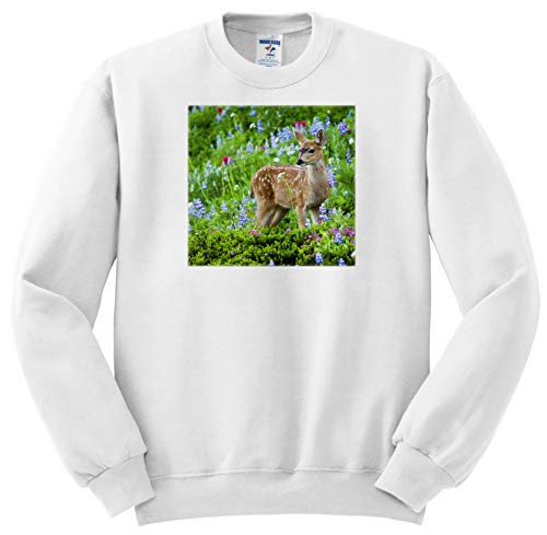 (3dRose Danita Delimont - Deer - Black-Tail Deer Fawn, Cascade Wildflowers - Adult Sweatshirt Small (ss_315167_1))