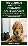 THE ULTIMATE GUIDE TO MINIATURE GOLDENDOODLES: The