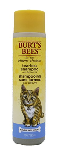 Burt's Bees Tearless Kitten Shampoo with Buttermilk