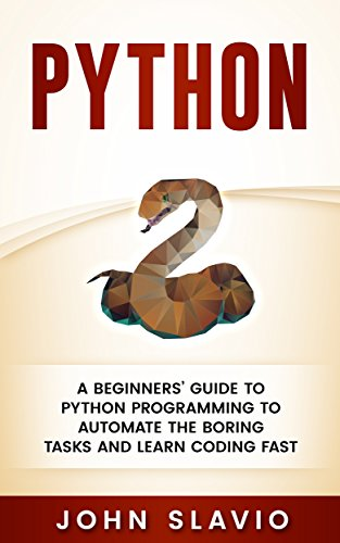 Python Beginners Programming Challenges programming ebook product image