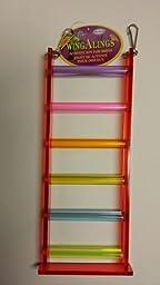 VoToys Acrylic 6 Step Ladder Bird Toy