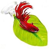 Clothful  Floating Bed Leaf Hammock Fighting Fish Aqarium Decoration