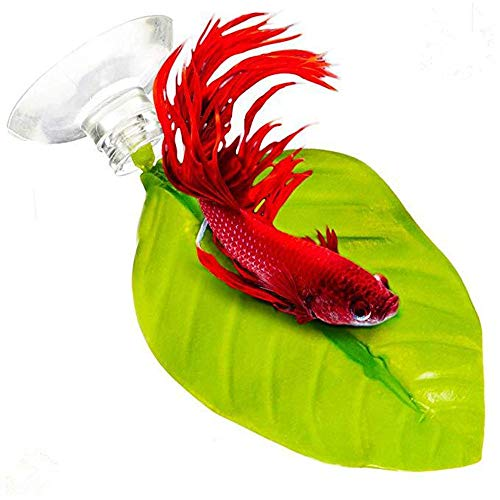 Aquarium Bettas Fishes Floating Rest Bed Leaf - Gbell 1Pcs Aqarium Floating Bed Leaf Hammock Fighting Fish Aqarium Decoration ()