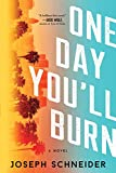 Image of One Day You'll Burn (LAPD Detective Tully Jarsdel Mysteries)