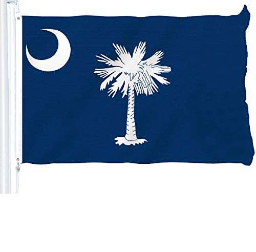 - G128 - South Carolina State Flag 3x5 ft Printed Brass Grommets 150D Quality Polyester Flag Indoor/Outdoor - Much Thicker and More Durable Than 100D and 75D Polyester