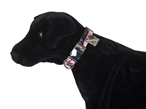 Pet-Champion-PTDCSTLG8-Hunting-Collar-Large-Strategy-Pink-Camo