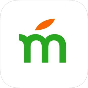 Mango language reviews
