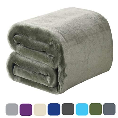 DREAMFLYLIFE Luxury Fleece Blanket Summer Thick Blanket Super Soft Blanket Bed Warm Blanket Couch Blanket for All Season Green King-Size, 90x108 in (Kidding Fleece Blankets)