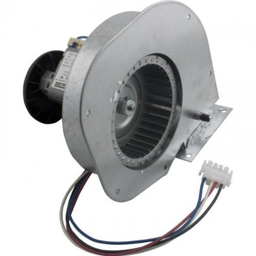 Hayward FDXLBWR1930 FD Combustion Blower Replacement for Hayward Universal H-Series Low Nox Pool Heater