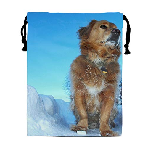 (Luxury Jewelry Pouches Drawstring Gift Favor Bags Candy Bag, 15.75x11.8 Inch-Snow Winter Labrador Dog)