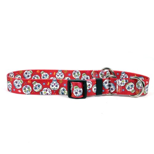Sugar Skulls Red Martingale Control Dog